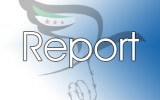 Daily Report on Violations of Human Rights in Syria: 13/07/2014
