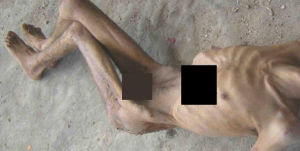 leaked report inside syria's prisons