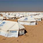 مخيم الزعتري ثاني أكبر مخيم للاجئين في العالم: مؤشرات وأرقام