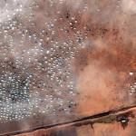 العفو الدولية: مطالبة للأردن بإدخال 12 ألف لاجئ عالق