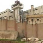 قوائم المفرج عنهم من سجن حمص المركزي