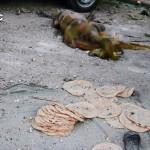 مجزرة في استهداف لمخبز في حلب